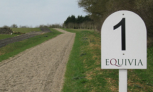 Equivia a market leader in all weather surfaces. On the gallops - consistency guaranteed throughout.