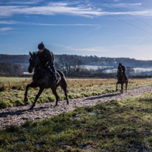 Racehorses training on an Equivia all weather gallop in the winter