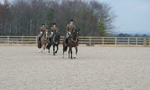 The Royal Horse Artillery training in their Equivia all weather arena