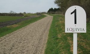 A horse gallop surfaced with the Equivia number 1 equestrian surface