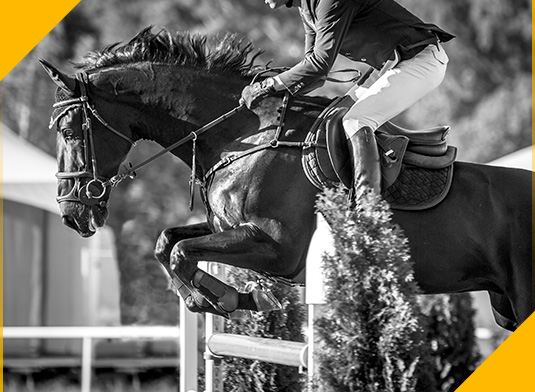 Event rider jumping on an Equivia surface