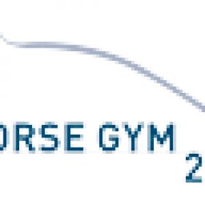 Horse Gym 2000 logo