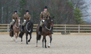 The Royal Horse Artillery training on their Equivia surface