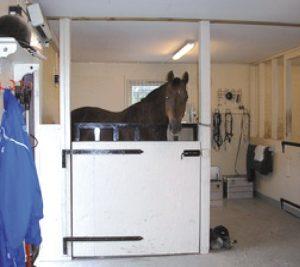 Horse stood in a Vitafloor VM1 Compact vibrating floor system