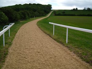 A horse racing gallop surfaced with Equivia all weather equestrian surface