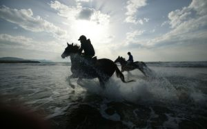 Two horses and riders in the sea