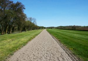 Photo of Jonjo O'Neils gallops. Photo courtesy of JJ O'Neill