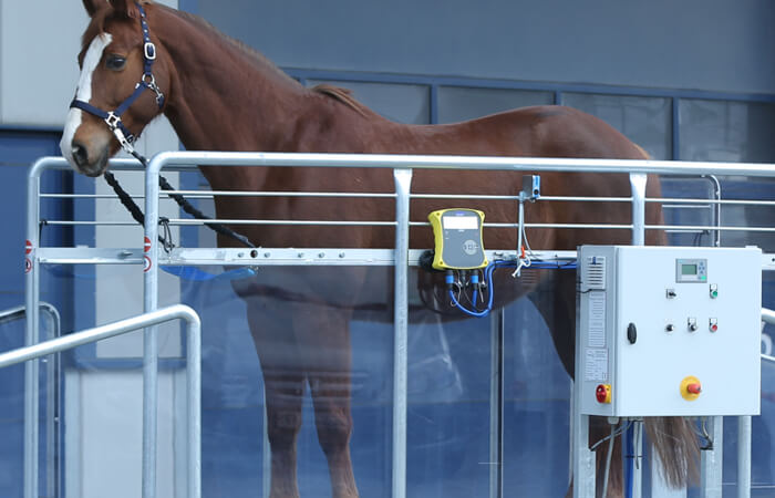 A close up of the controls on a Horse Gym 2000 equine treadmill