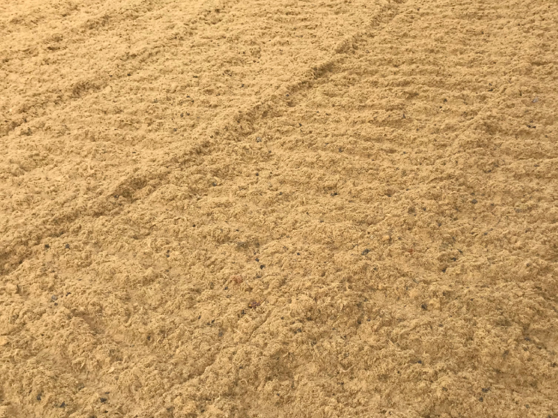 Tracks in Equivia number 3 equestrian surface