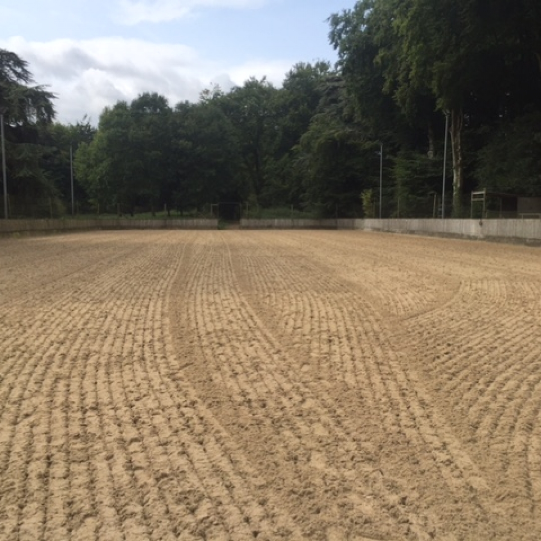 All Weather Surface Equestrian Riding Surface Arena